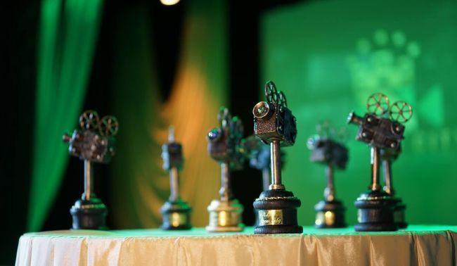 """20 жовтня стартує 4-й Рівненський міжнародний кінофестиваль """"Місто Мрії"""""""