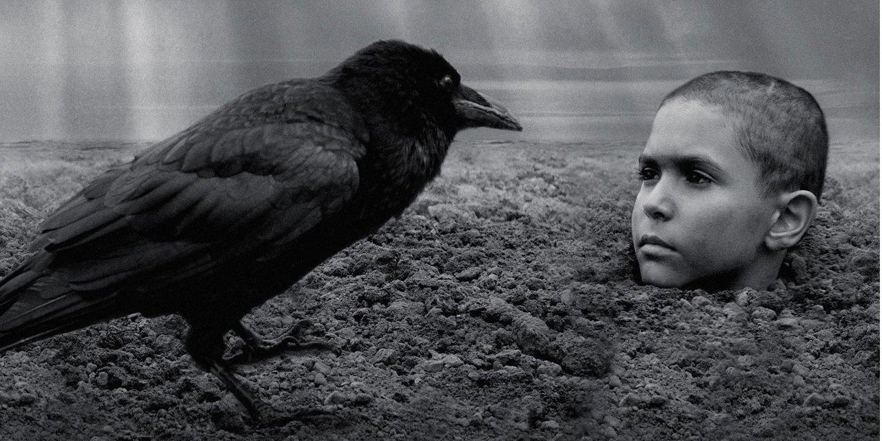 """""""Розфарбований птах"""" Вацлава Маргоула удостоївся овацій на Венеційському кінофестивалі"""