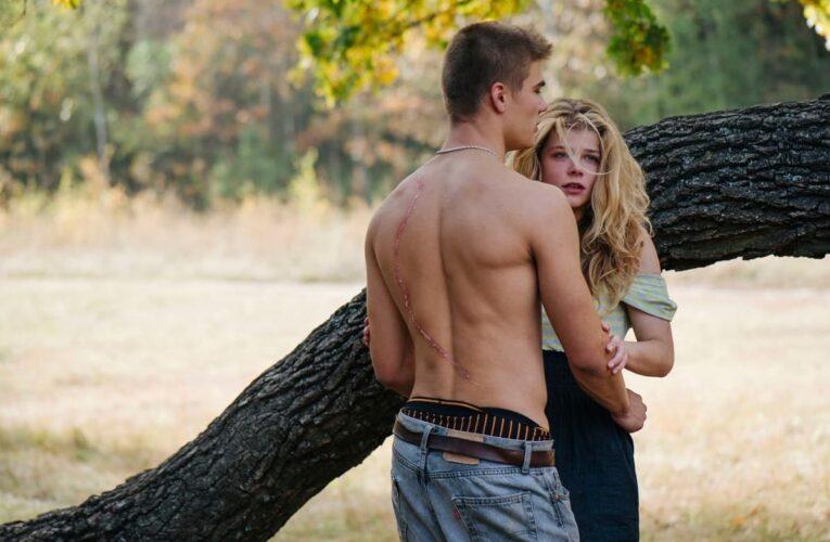 Фільм «Коли падають дерева» Марисі Нікітюк покажуть на телебаченні