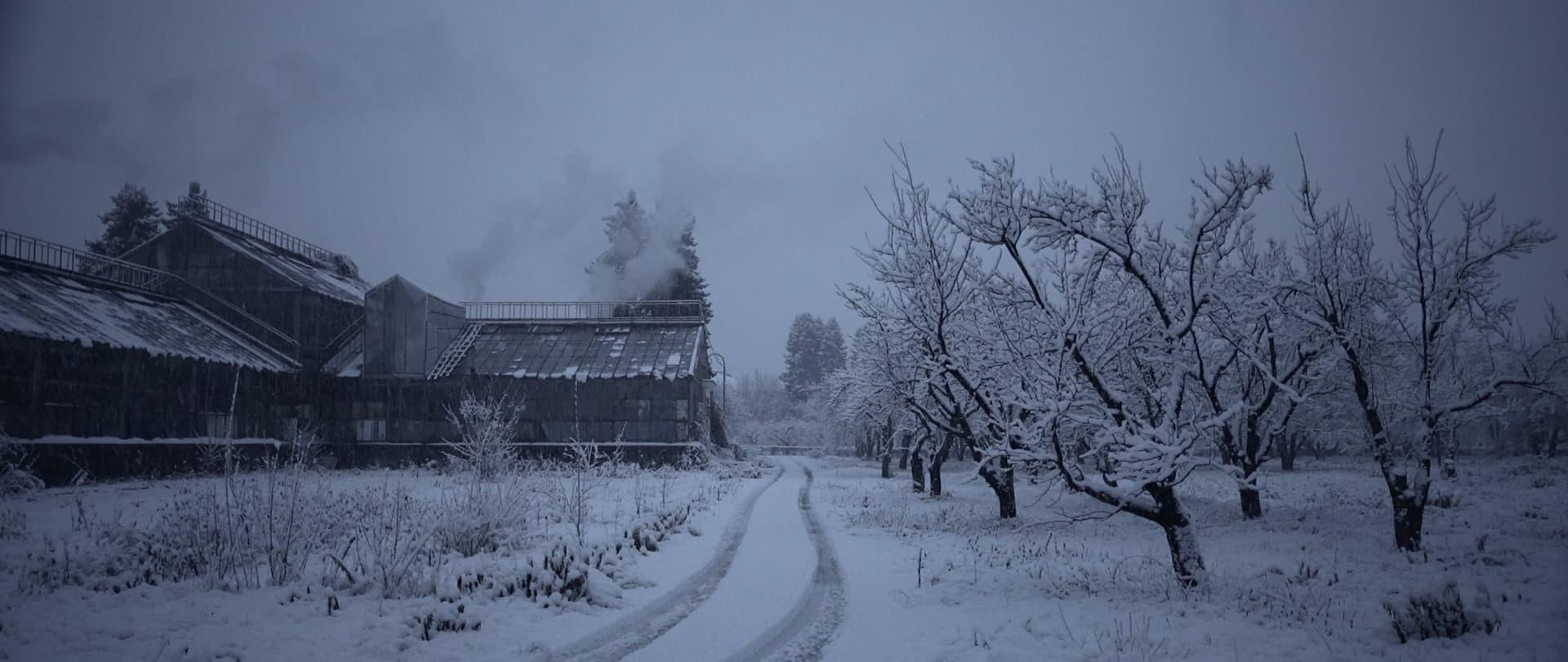 Історії Зимового саду